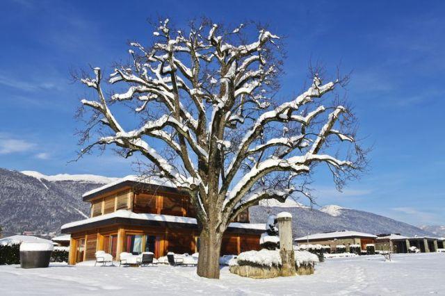 ced9d69dd222cb5aa4188d3aeb4dc29f--ski-resorts